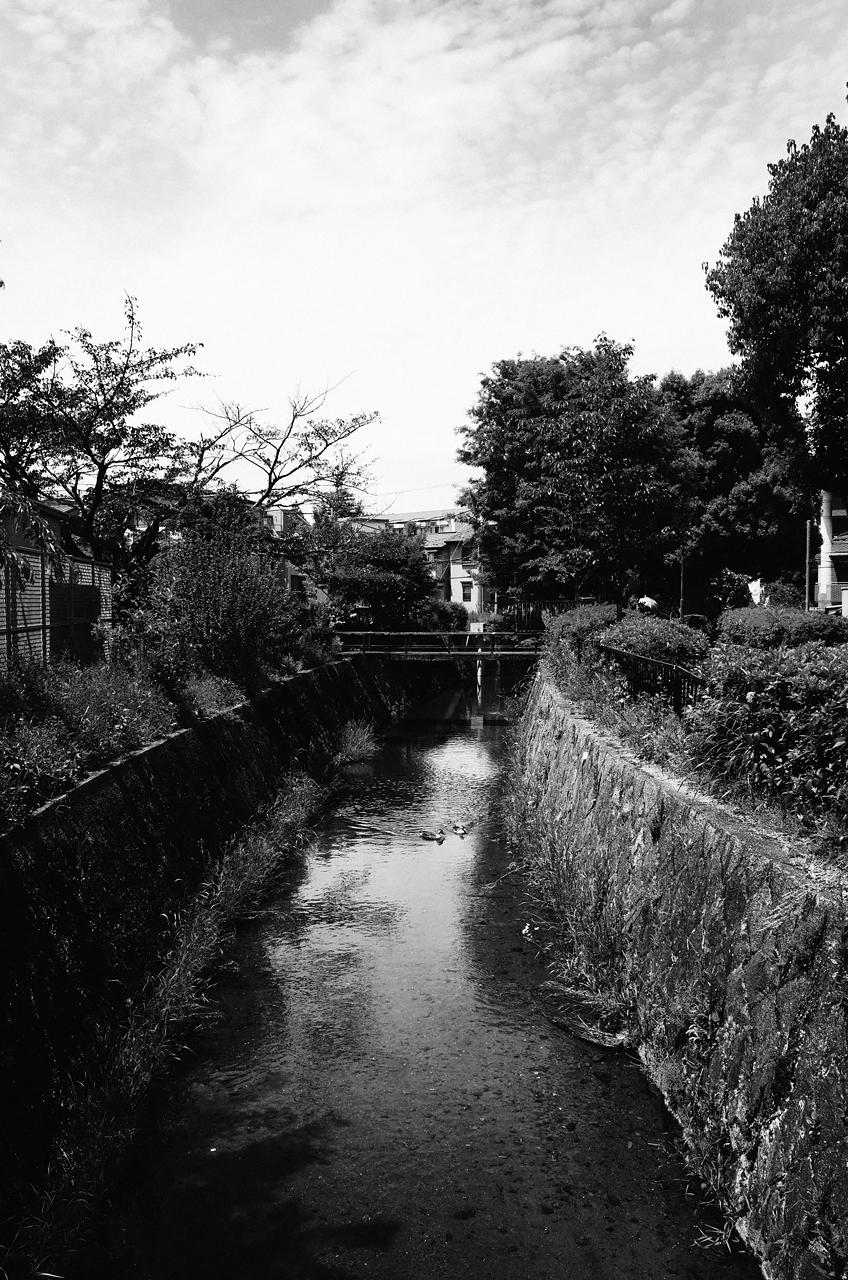 shirakawa sosui dori