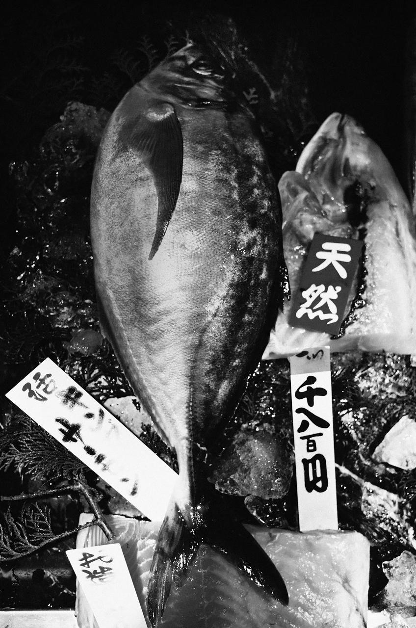魚辰さんのカンパチ